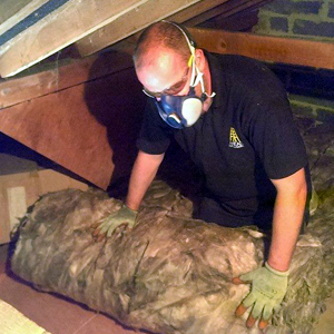loft insulation Haywards
